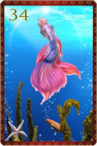 Lenormandkarte die Fische: kartenlegen-beratung.com